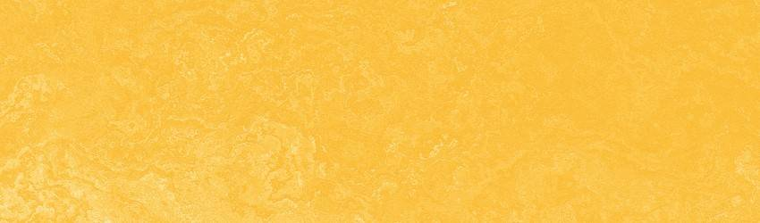 the-color-yellow