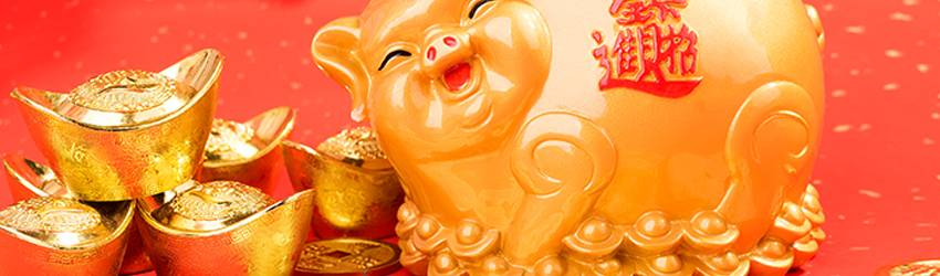 Chinese zodiac - year of the pig in gold.
