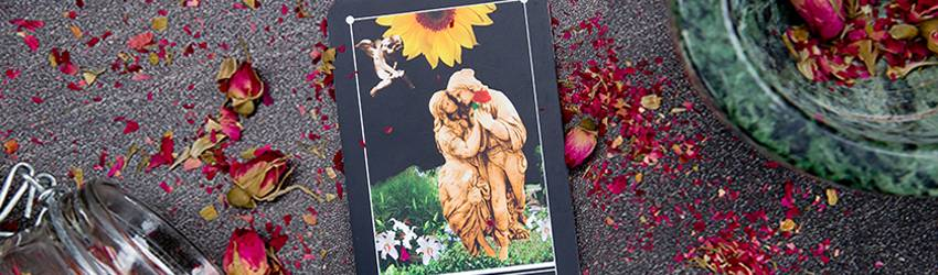The lovers card in Tarot on the ground surrounded by rose peddles.