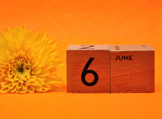 Numerology & the Number 6: What Does June Mean?