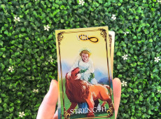 You Pulled the Strength Tarot Card - Now What?