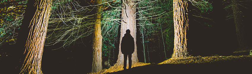 A man stands in front of some trees - silhouetted.