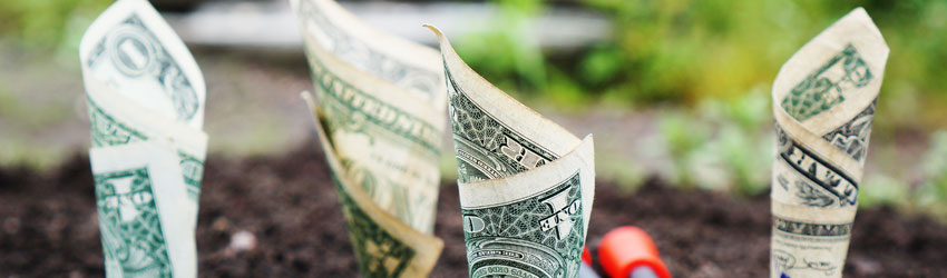 Money planted in the ground to attract abundance.