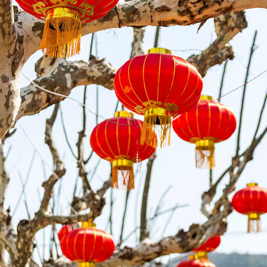 Chinese Astrology Understanding The Trines