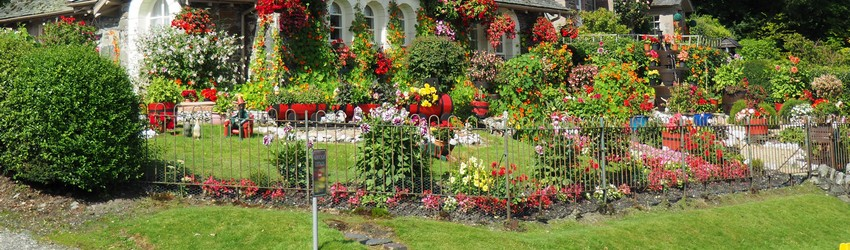 A garden in front of a house.