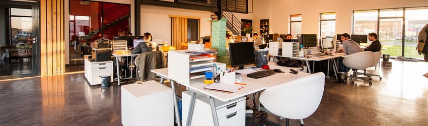 People working in a startup office.