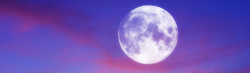 A large picture of the Full Moon, there is pink and purple in the sky surrounding it.