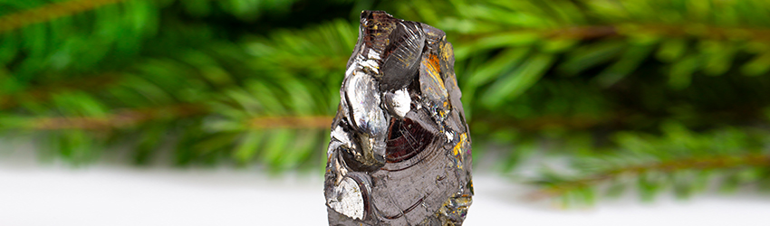 A Shungite Crystal in the foreground and leaves in the background.